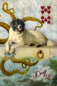 18. SSL Dog 10 of Hearts